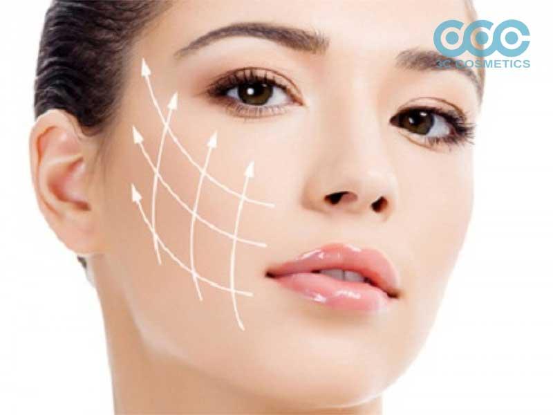 Khái niệm về Collagen và Elastin